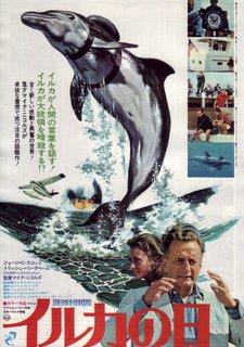 イルカの日.jpg